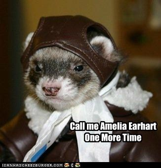 amelia earhart,call me,ferret,i dare you,lost,One More Time