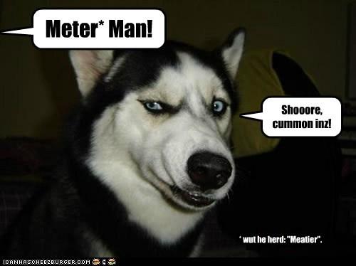 """Meter* Man! Shooore, cummon inz! * wut he herd: """"Meatier""""."""
