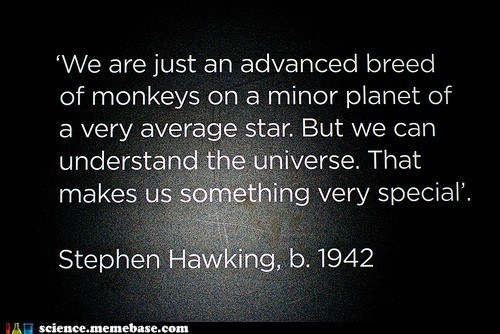 curious,humanity,Professors,quote,stephen hawking