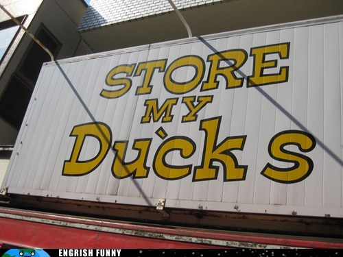 store my ducks