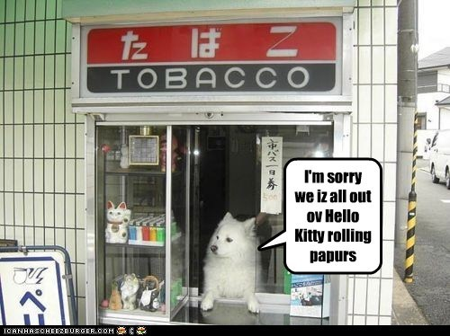 I'm sorry we iz all out ov Hello Kitty rolling papurs
