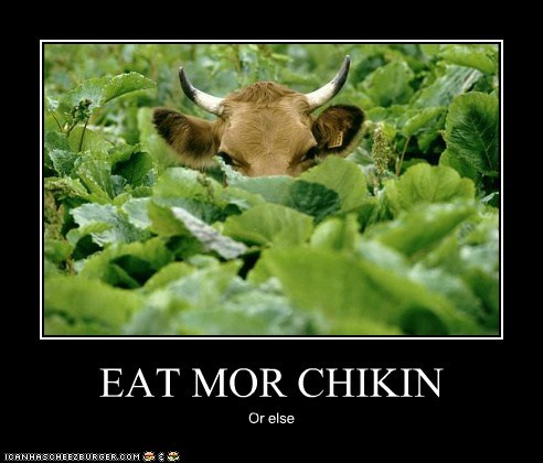 Cheezburger Image 6313310464