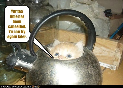 Yur tea time haz been canselled. Yu can try again later. ) ) ( I _ _ ( _ I I I ( )