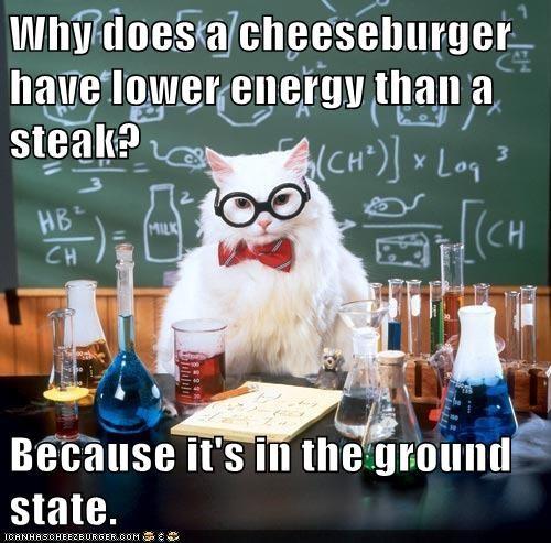chemistry cat energy ground state hamburger science - 6313466368