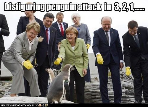 angela merkel penguins political pictures - 6313680128