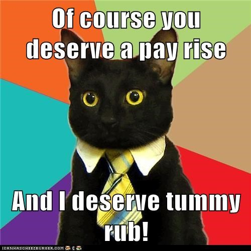 Business Cat - 6313910784