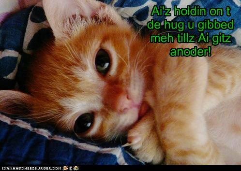 Cheezburger Image 6315055872