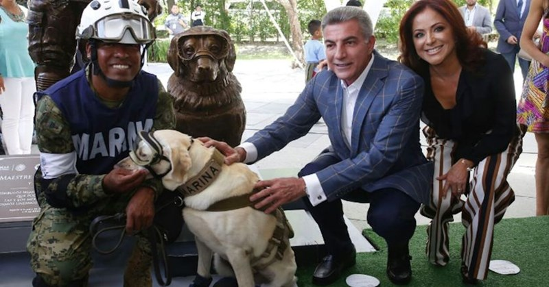 hero dogs mexico statue military earthquake - 6315781