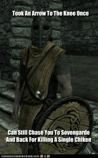 arrow to the knee chase chicken doesnt-make-sense guard Skyrim sovengarde whiterun you-cant-explain-that