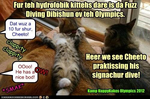 Fur teh hydrofobik kittehs dare is da Fuzz Diving Dibishun ov teh Olympics. Heer we see Cheeto praktissing his signachur dive! clappity clappity Dat wuz a 10 fur shur, Cheeto! OOoo! He has a nice bod! *SMAK* OW! Kamp KuppyKakes Olympics 2012