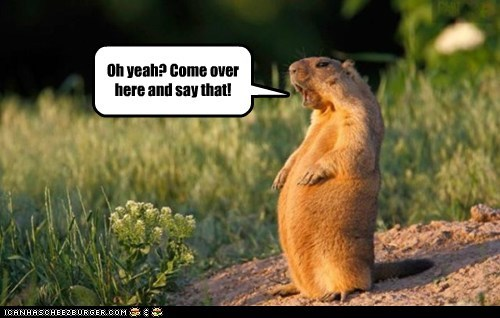 field prairie dog tough guy - 6318249984