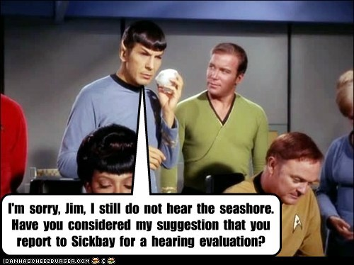 I'm sorry, Jim, I still do not hear the seashore. Have you considered my suggestion that you report to Sickbay for a hearing evaluation?