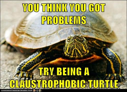 claustrophobia claustrophobic phobia phobias turtle - 6318795008