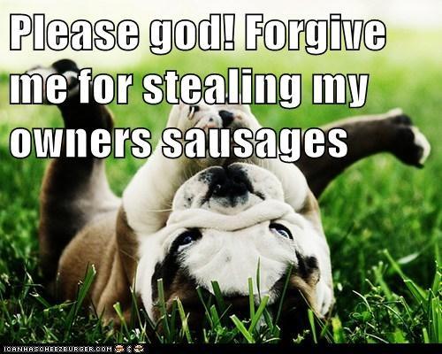 Cheezburger Image 6319065856