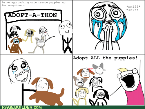 adoption all the things pets Rage Comics - 6319154176