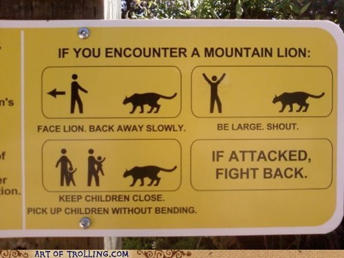 defense IRL mountain lion sign - 6319168768