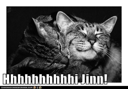 Hhhhhhhhhhi Jinn! - Lolcats - lol | cat memes | funny cats | funny
