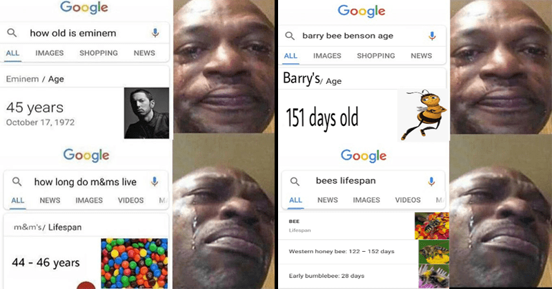 Funny meme about life expectancy, google, funny memes, eminem, m&ms, barry the bee, bee movie.