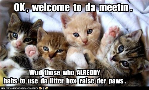 baby bathroom itty bitty kitty committe itty bitty kitty committee litter box little paws raise hand - 6320341760