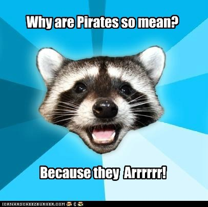 jokes Lame Pun Coon Memes pirates puns raccoons - 6320380672