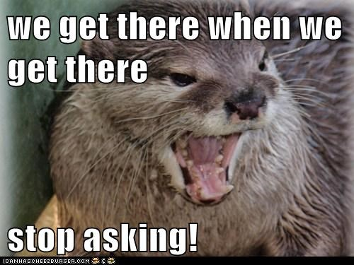 angry annoyed are we there yet otter parents stop asking yelling - 6320492288