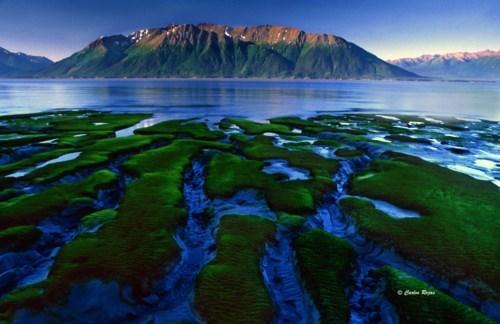 alaska inlet island lake mountain - 6320950272
