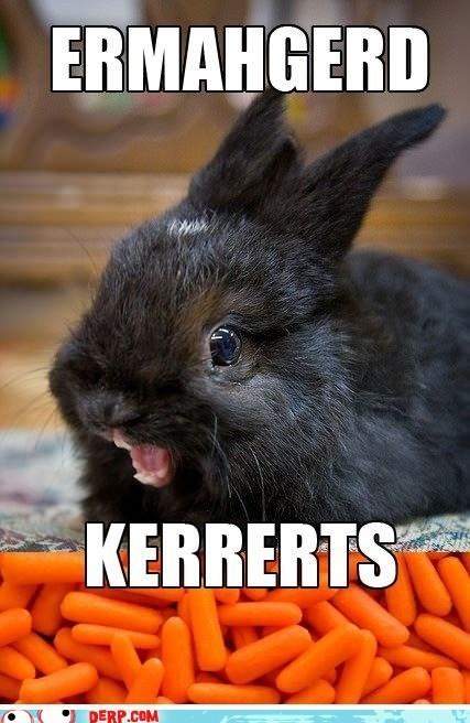 berks,bunny,carrots,derp,Ermahgerd,gersberms