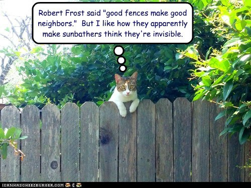 "Image result for ""Good fences make good neighbors."""