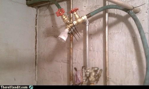 garden hose,garden hose shower,hose,shower,showerhead,spiggot