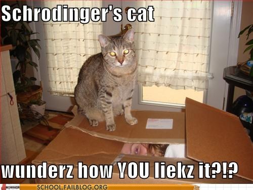 Physics 903: In Soviet Russia, Schrodinger's Cat experiments on you