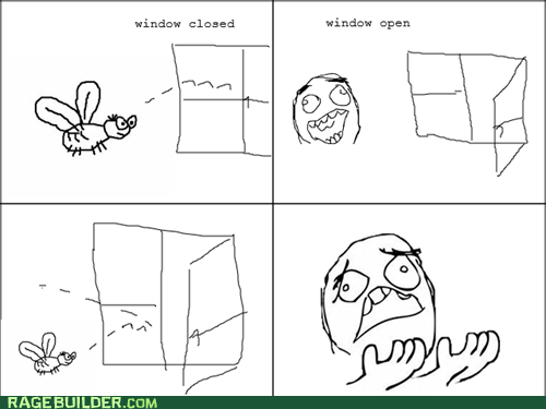 exit,fly,Rage Comics,window