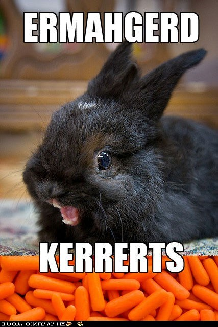 bunnies,carrots,derp,Ermahgerd,oh my god,omg,rabbits