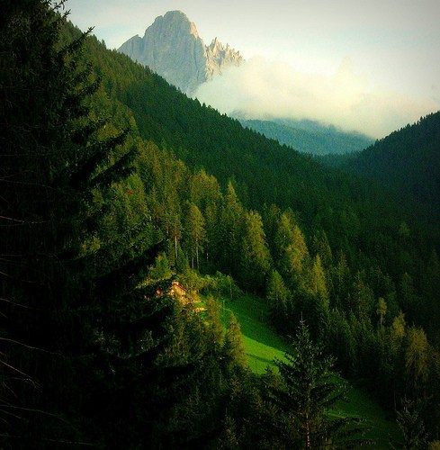 clouds,Forest,Italy,mountain