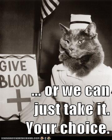 Blood doctor help medical nurse - 6324502784