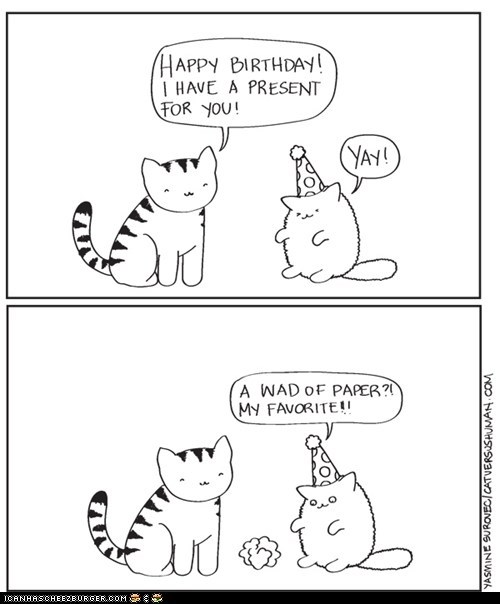 birthdays cat versus humans Cats comic comics gifs paper paper wad presents
