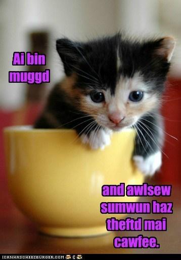 Ai bin muggd and awlsew sumwun haz theftd mai cawfee.