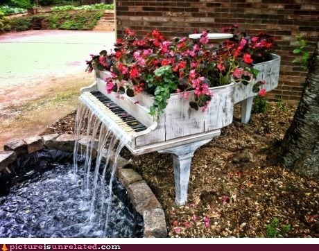 best of week,garden,piano,pond,water,wtf