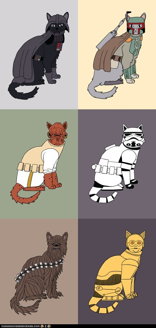 admiral ackbar,art,boba fett,C-3PO,Cats,chewbacca,darth vader,drawings,illustrations,star wars,stormtrooper