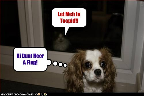 Let Meh In Toopid!! Ai Dunt Heer A Fing!