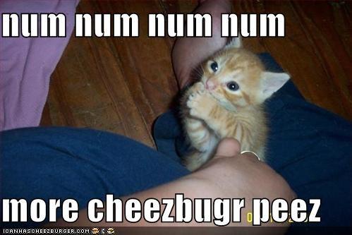 Cheezburger Image 632592640