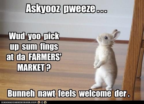 bunny farmers market rabbit - 6325960960
