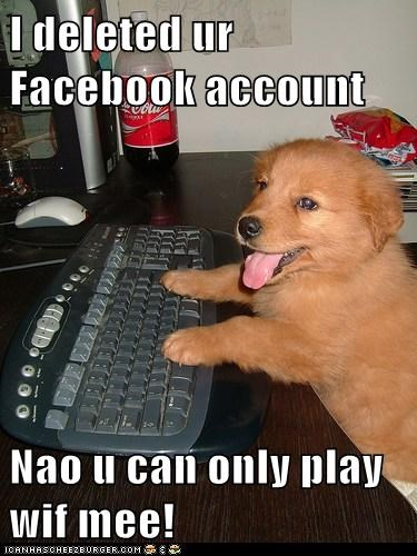 I deleted ur Facebook account Nao u can only play wif mee!