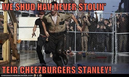 Cheezburger Image 6326170624
