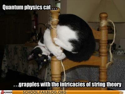 Cats quantum physics cat String Theory - 6327133696