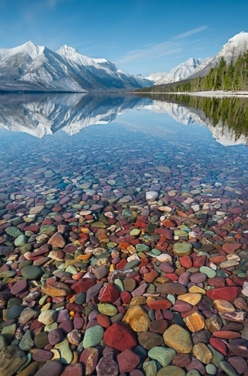 crystal clear water lake Montana mountain pebbles - 6328046080