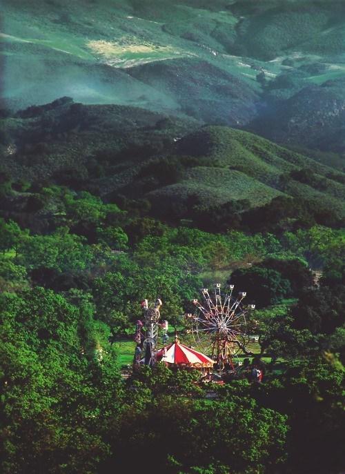 carnival rides,ferris wheel,Forest,romania