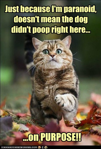 Just because I'm paranoid, doesn't mean the dog didn't poop right here... ...on PURPOSE!!