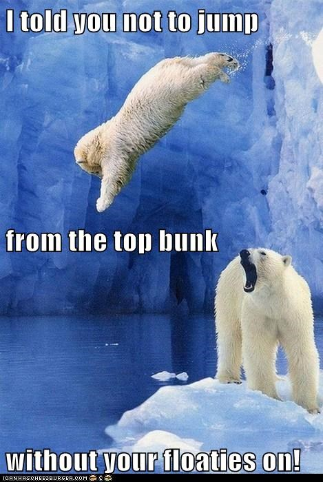 diving ice jump kids parents polar bears pool - 6328178432