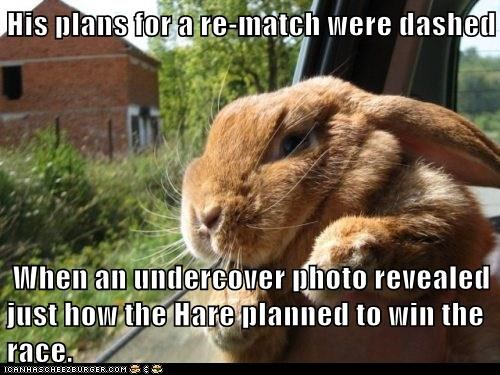 His plans for a re-match were dashed When an undercover photo revealed just how the Hare planned to win the race.