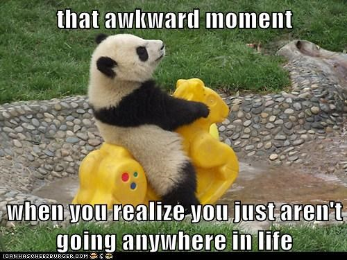 Awkward Moment captions existential crisis going nowhere life panda panda bears rocking horse - 6329298432